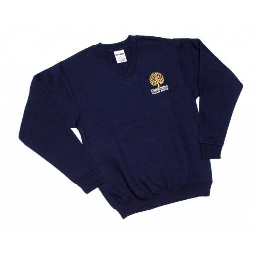 CVS Sweatshirt.jpg