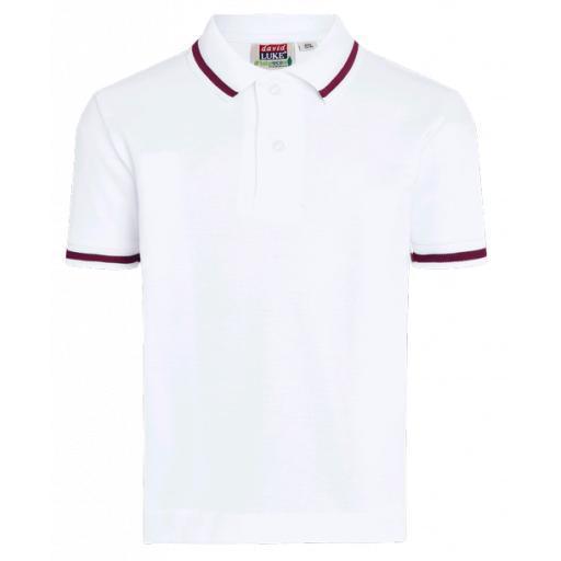 Fairfield Park Maroon Tipped Polo Shirt