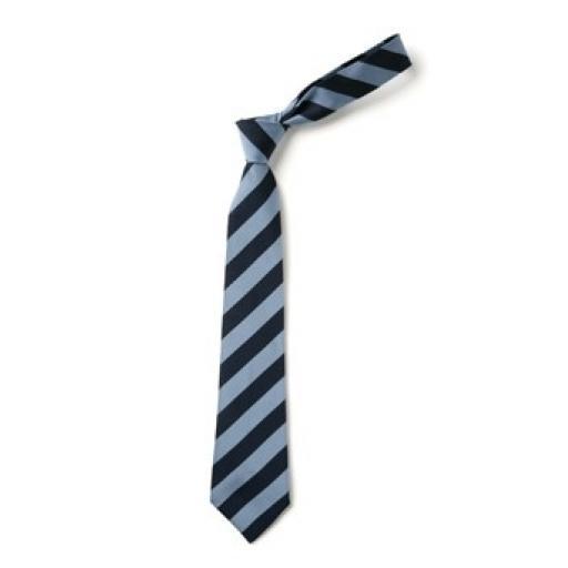 GD Tie - Blue (Aqua).jpg