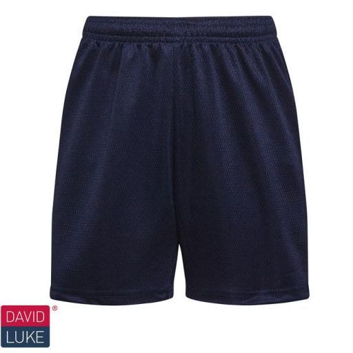 Mesh Sports Shorts - Navy