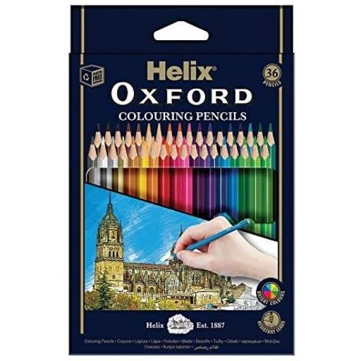 Helix® Oxford Colouring Pencils - Pack of 36