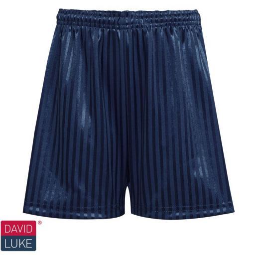 Shadow Stripe Sports Shorts - Navy