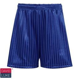 shadow-strip-shorts-dark-royal-ps-dl11-dr-2d0.jpg