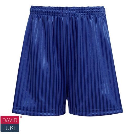 Shadow Stripe Sports Shorts - Royal Blue